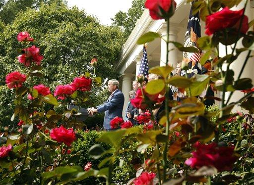 AP.Rose Garden