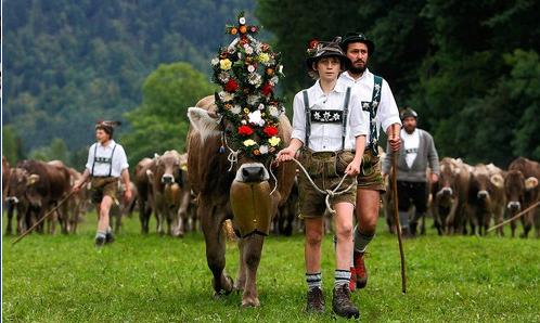 herder-german.png