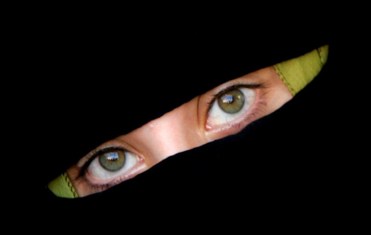 https://www.nocaptionneeded.com/wp-content/uploads/2007/10/burqa-eyes-rh.png