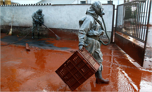 hungary toxic spill suit