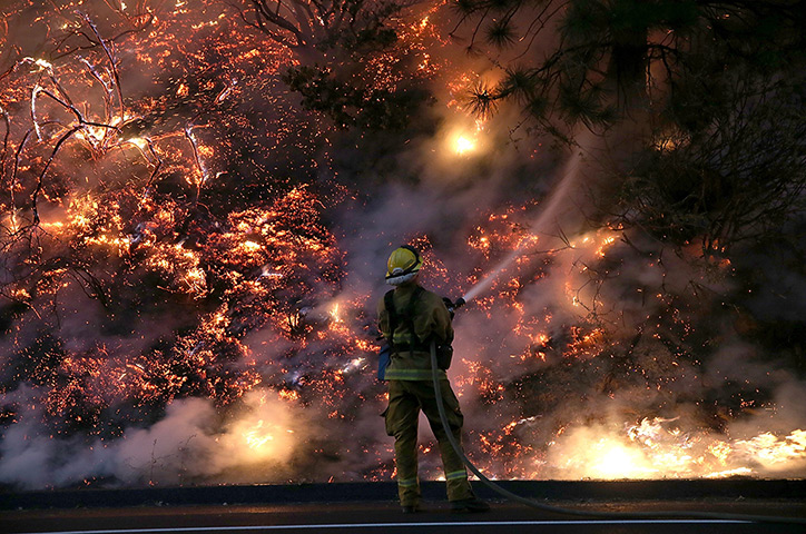 California, USA: A firefighter douses the flames of the Rim Fire near Grove